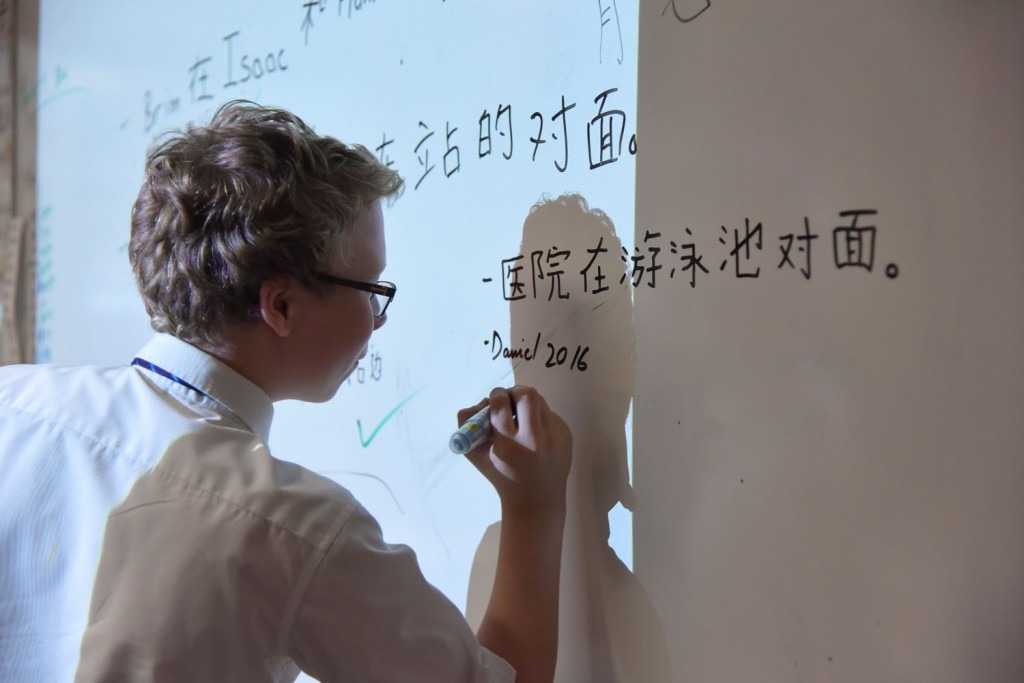 Year 7 Teacher Handbook | Mandarin Excellence Programme